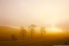 lever de soleil brouillard